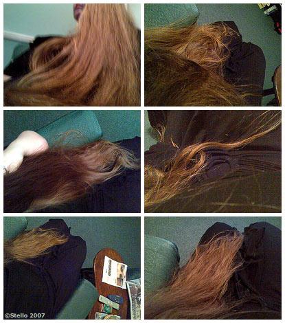 070327_hairart.jpg